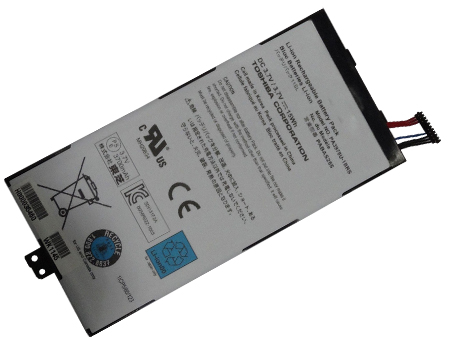 TOSHIBA PABAS255 battery